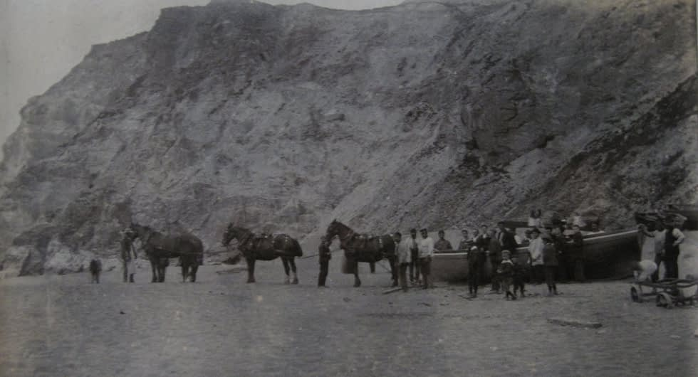 Photograph of a team of horses hauling a boat