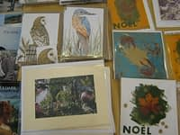 Cards for sale at the Museum coffee morning